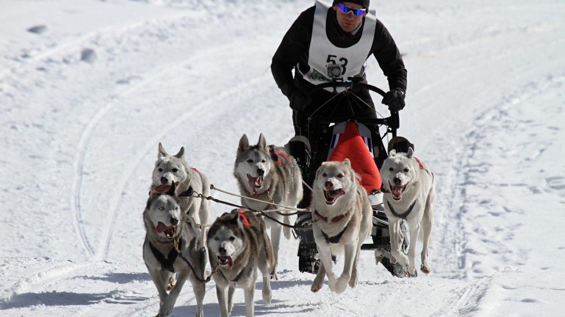 Wintersport-News vom Dienstag – Grünes Licht für Vierschanzen-Tournee